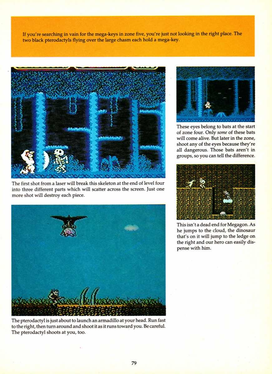 Game Player's Encyclopedia of Nintendo Games page 079