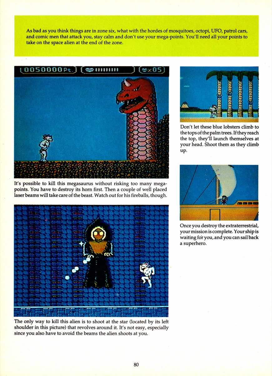 Game Player's Encyclopedia of Nintendo Games page 080
