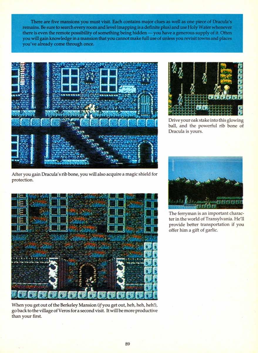 Game Player's Encyclopedia of Nintendo Games page 089