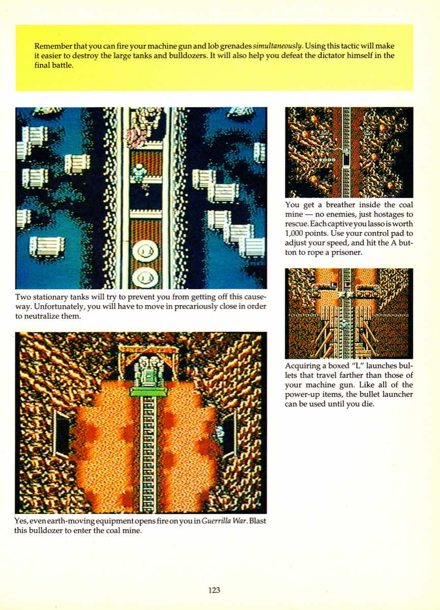 Game Player's Encyclopedia of Nintendo Games page 123
