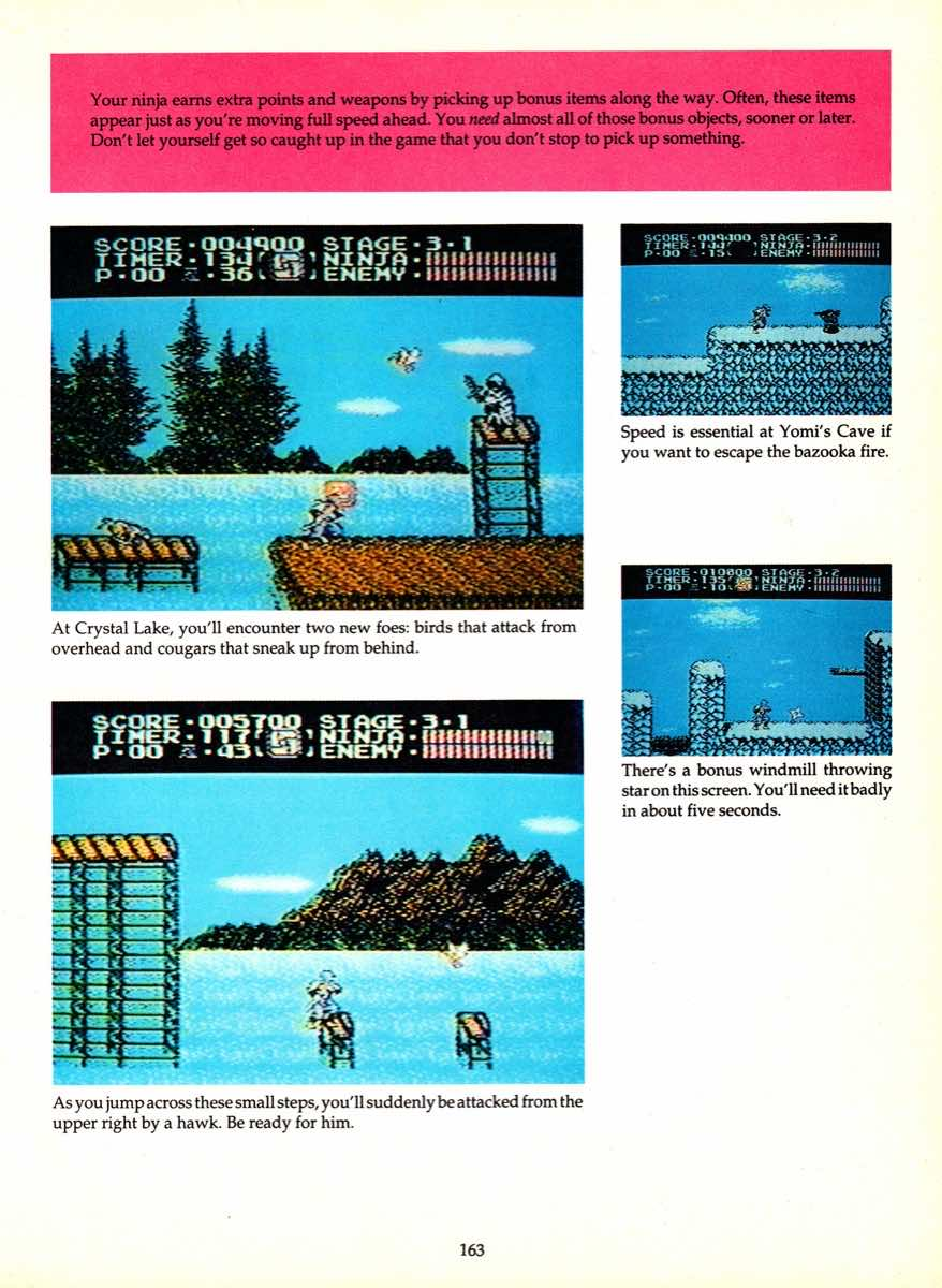 Game Player's Encyclopedia of Nintendo Games page 163