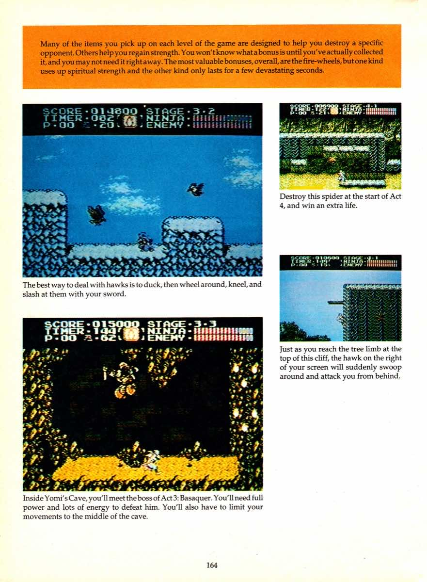 Game Player's Encyclopedia of Nintendo Games page 164