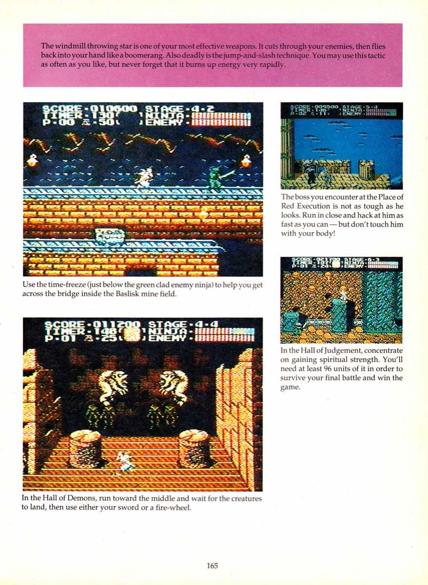 Game Player's Encyclopedia of Nintendo Games page 165