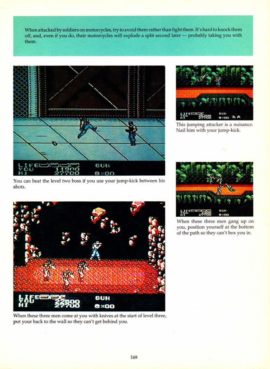Game Player's Encyclopedia of Nintendo Games page 169