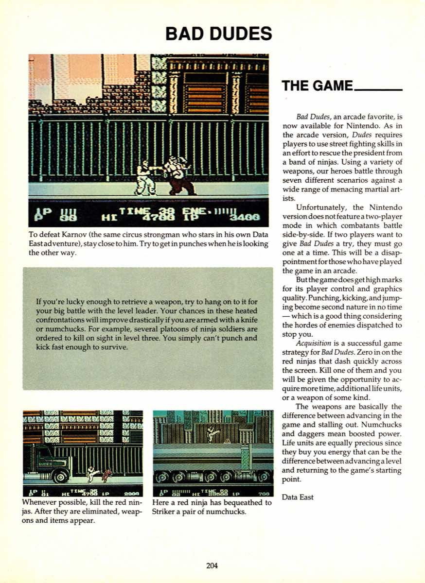 Game Player's Encyclopedia of Nintendo Games page 204