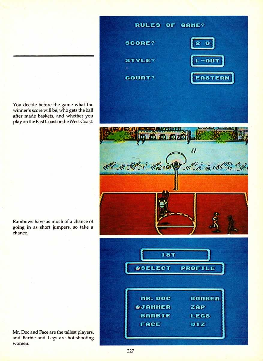 Game Player's Encyclopedia of Nintendo Games page 227
