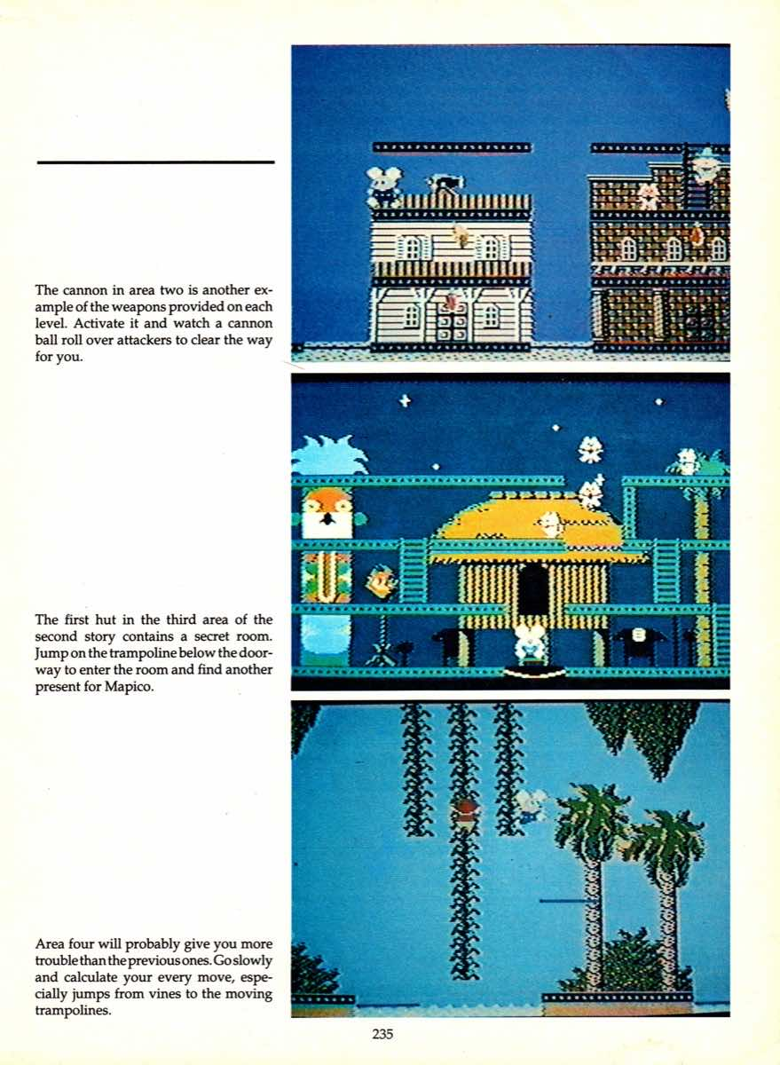Game Player's Encyclopedia of Nintendo Games page 235