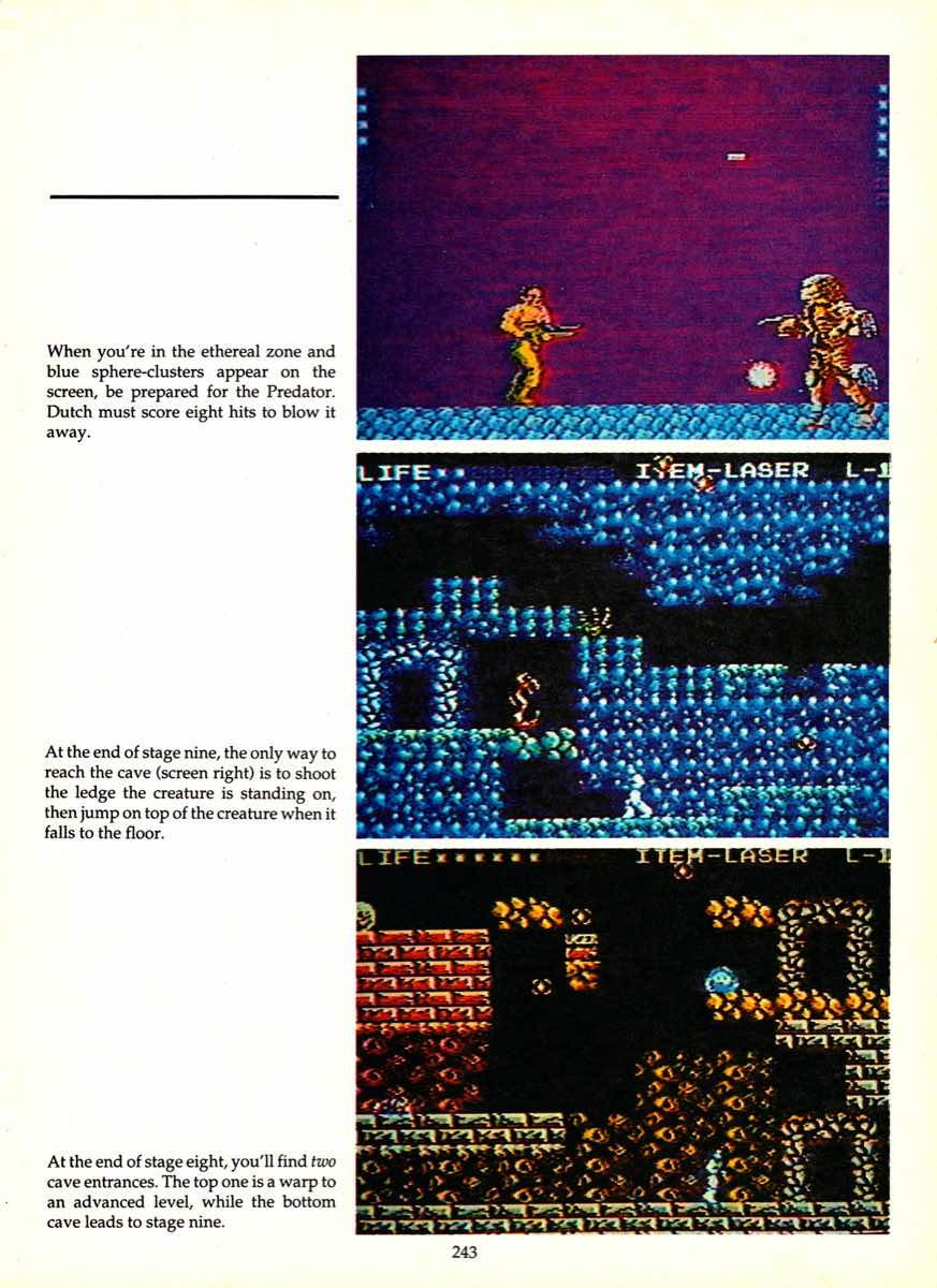 Game Player's Encyclopedia of Nintendo Games page 243