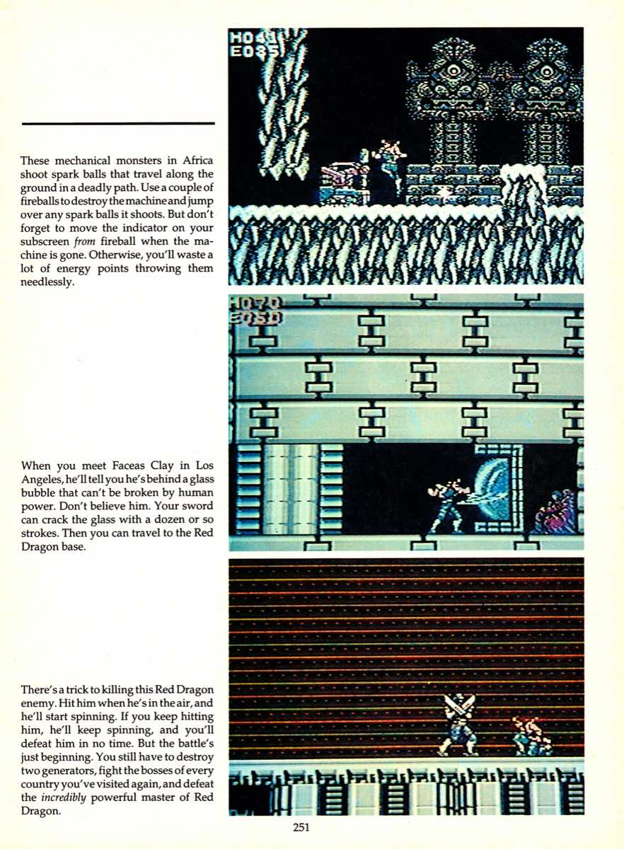 Game Player's Encyclopedia of Nintendo Games page 251